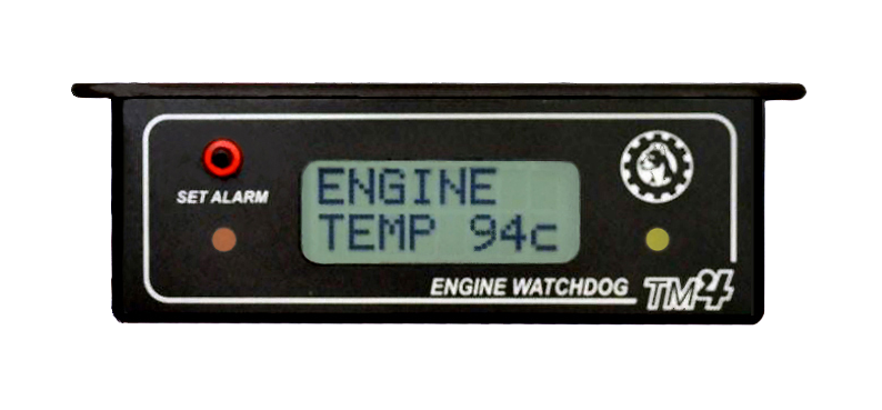 Audible thermometer